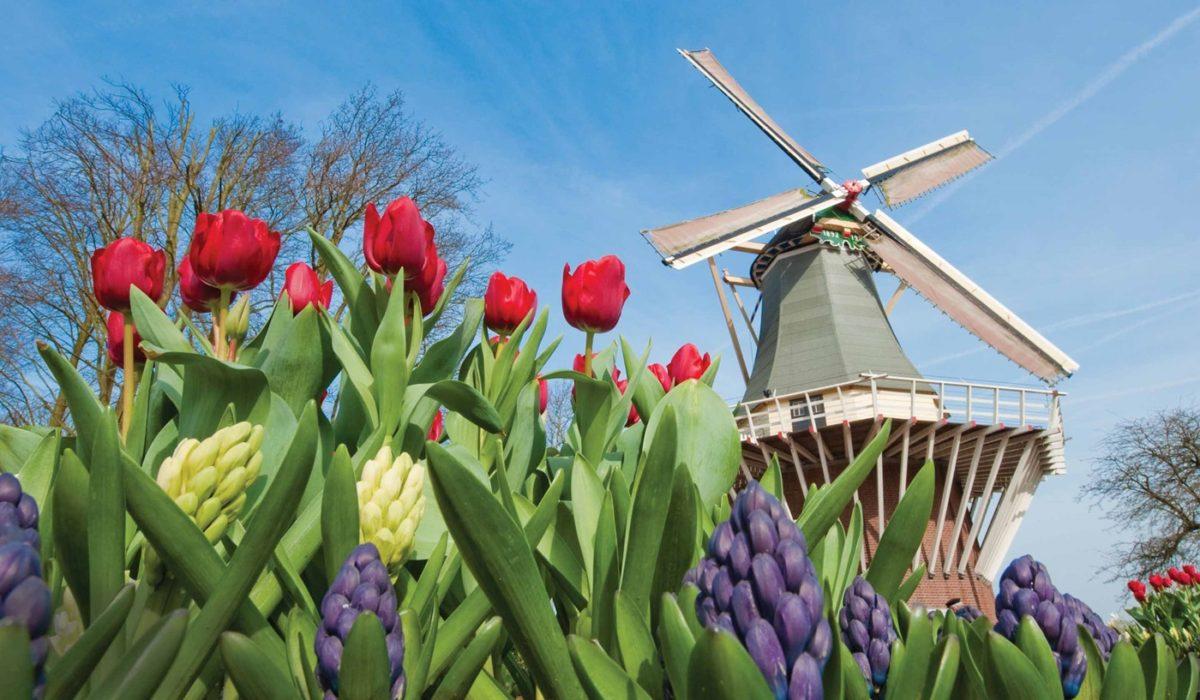 Tauck Tulip Cruise